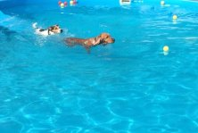 piscina VauLand
