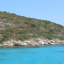 vegetazione brulla e mare azzurro