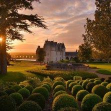 9 9 8 Jardin Château d'Amboise L De Serres