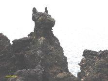 roccia a forma di cane