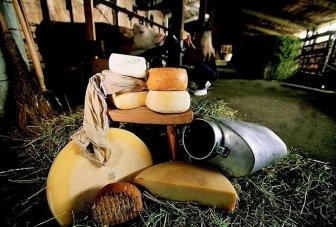 Carnia formaggi (3)