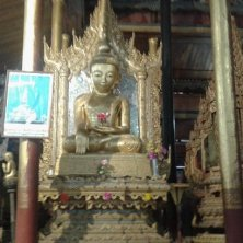 interno tempio gatti