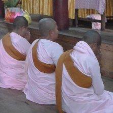 monache al tempio
