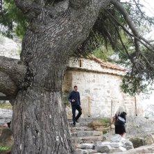 chiesa al tempio Artemide