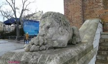 leone ai piedi della torre municipio