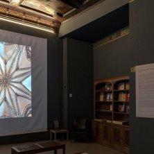 biblioteca y techo capilla