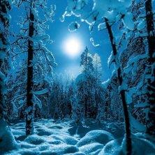 luna notte polare