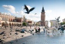 Cracovia piazza