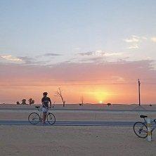 Al Qudra Cycling Track_3