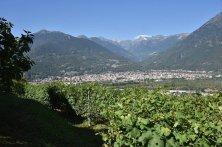 Vitigni e cantine in Val d'Ossola - Villa Mercante (2)