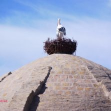 finto nido di cicogne sul tetto