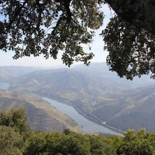 Portogallo, Estrada National 2_Douro (Pixabay)