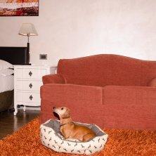 hotel con cane