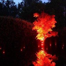 illuminazione giardini notturna Chaumont