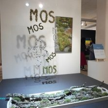 museo arte contemporanea sui fiori
