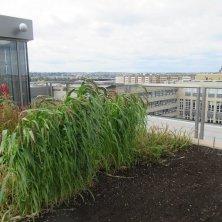 orto del futuro sul tetto museo agricoltura Praga