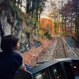 treno_del_foliage_-_ferrovia_vigezzina-centovalli_-_ph__emanuela_ricci__2_