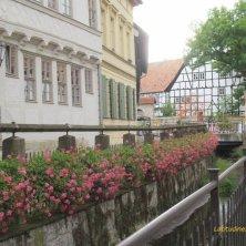 fiori e case a graticcio a Quedlinburg