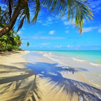 S√£o Miguel dos Milagres, Alagoas, Brazil: Fantastic beach scene. Caribbean view.
