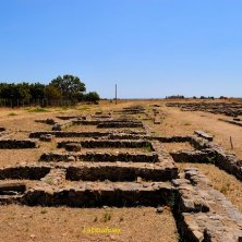 Policoro_area archelogica_Museo_phVGaluppo
