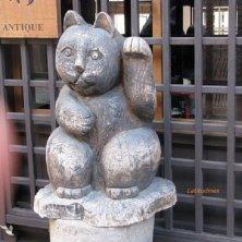 benvenuto gatti in Giappone
