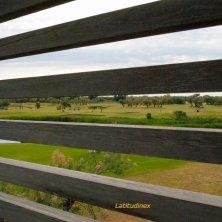 Albarella_ il campo da golf visto dalla torretta per il birdwatching_phVGaluppo