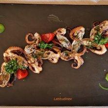 Moscardini_Ristorante Antico Petronia_phvGaluppo cucina di Caorle
