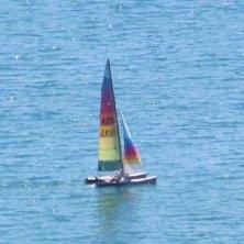 barca a vela a Termoli