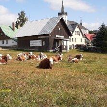 paesaggio bucolico e villaggio Valle di Cristallo