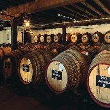 barrel vini portoghesi del centro