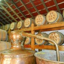 in una cantina di Madeira vini portoghesi