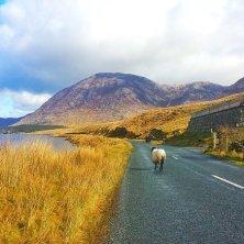 Connemara Wild Atlantic Way