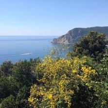 mare Cinque Terre Liguria