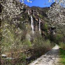 Cascate-Acquafraggia_fioriture+sentiero primavera in Valtellina
