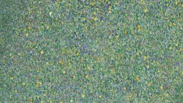 Deux tableaux de Klimt restitués dont un par erreur…