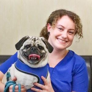 thumbnail image0 3 - Toni-May Smith - Vet Nurse