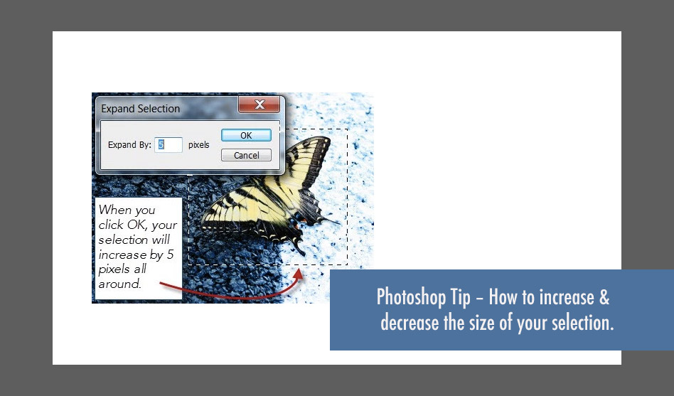 Photoshop Tip - How to increase and decrease the size of a selection