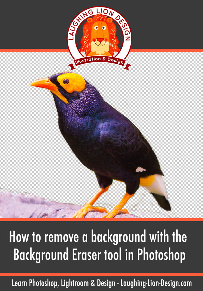 How To Use The Background Eraser In Photoshop To Easily Remove A Background