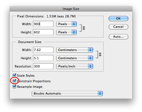 Photoshop Save For Web 2
