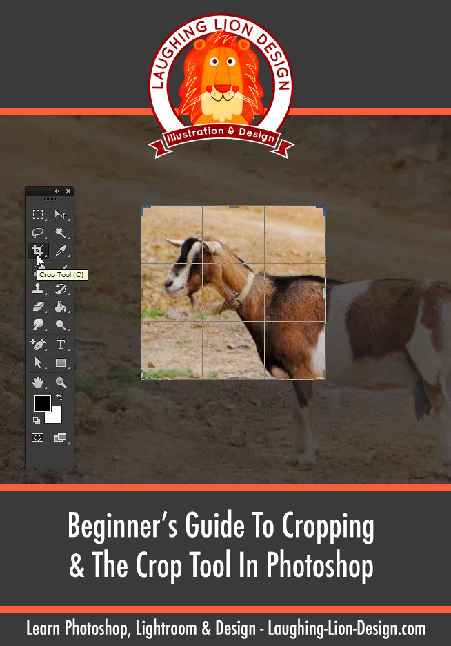Beginner's Guide To Cropping & The Crop Tool In Photoshop