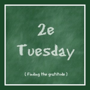 2e Tuesday-gratitude