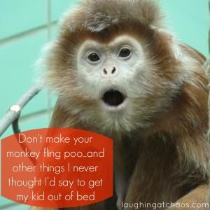 Don't make your monkey fling poo