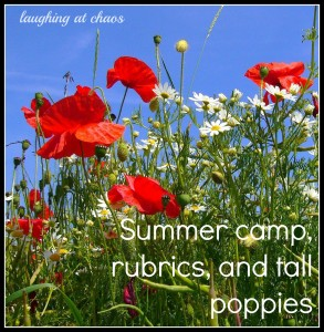summer camp rubrics and tall poppies
