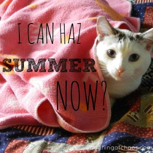 i can haz summer now?