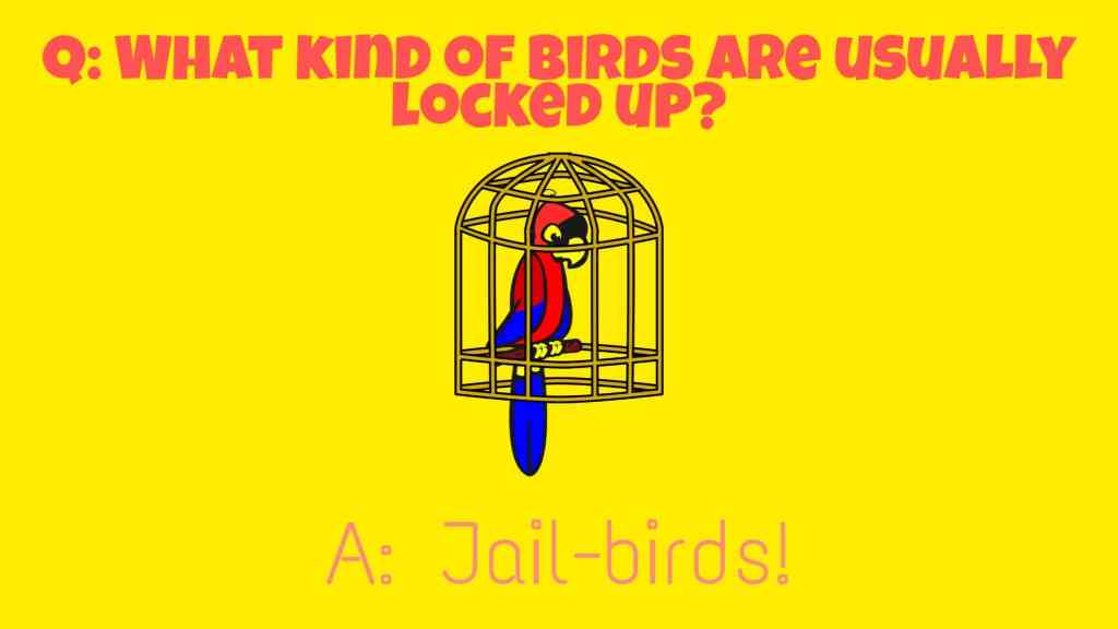 The Absolutely Best Birds Puns Ever - Laughitloud