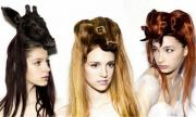 funny animal hair style of girls