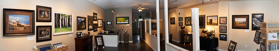 Welcome to the new Launstein Imagery Wildlife Art Gallery in the Crowsnest Pass, Alberta. We are located at 12323 20 Ave, Blairmore.