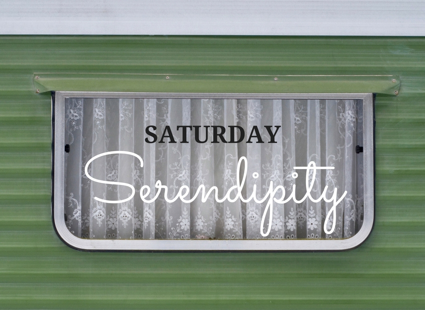 Serendipity, every Saturday, Rain or Shine
