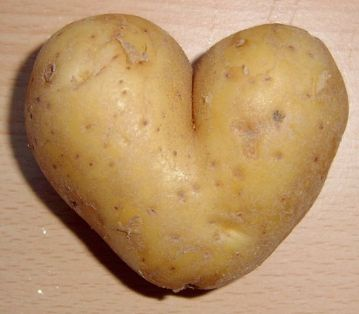 686px-potato_heart_mutation.jpg