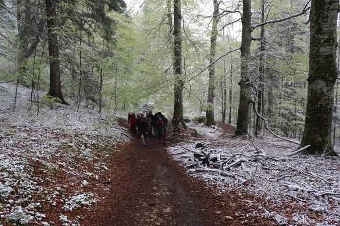 Excursie Sinaia mai 2015  Clubul Morişca